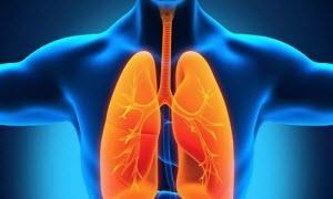 Симптомы пневмонии у взрослого человека