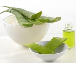 Сок алоэ для лечения простуды